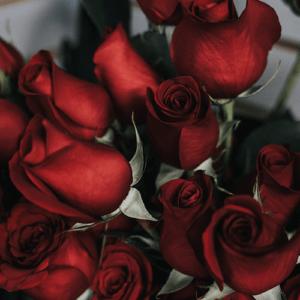 cadeau saint valentin lyon